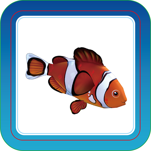 Clownfish - Interactive Cards